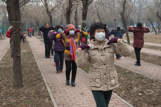 The 2016/2017 CAS project Airborne: Pollution, Climate Change, and New Visions of Sustainability in China attempts to 'answer the questions of how, and to which extent, Communist authorities, scientists, rural/urban inhabitants, and environmental organizations interact in responding to the inseparable risks of air pollution in China and global climate change'.